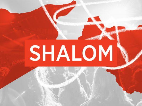 <span>The Shalom Project</span><i>→</i>